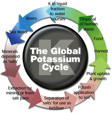 Potash Cycle.jpg
